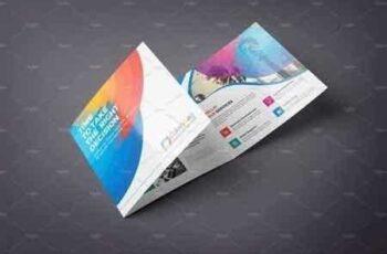 1707069 Square Tri Fold Brochure 1347318