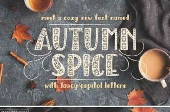 1707097 Autumn Spice Display San Serif Font 1953903 4