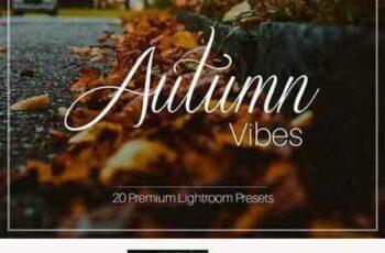 1708012 Autumn Vibes - Lightroom Presets 1957277 5