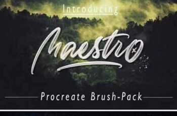 1708057 Maestro Brush-Pack 2023445 3