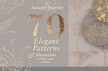 1708085 Autumn Patterns & Illustrations 1833220 6