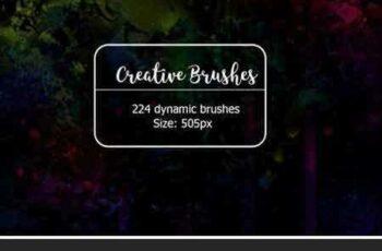 1708106 224 Dynamic Creative Brushes 1908233 7