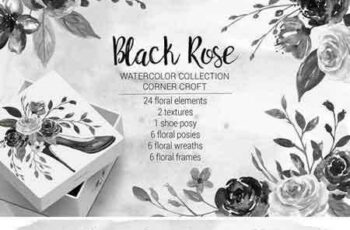 1708131 Watercolor Black Rose Collection 2043233 3