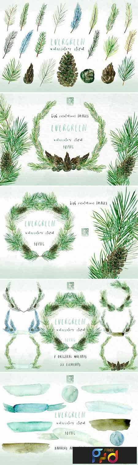1708138 Pine Watercolor clipart 2043122 1