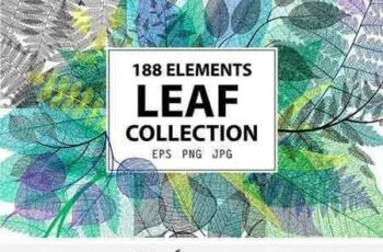 1708187 Leaf Collection 2053452 5