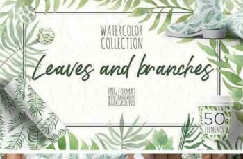 1708218 Watercolor Leaves and Branches 2038300 6