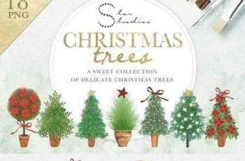1708280 Christmas Trees 2079428 5