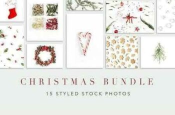 1708295 Christmas Bundle 1980617 7