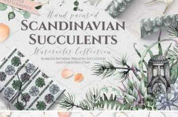 1709033 Watercolor Scandinavian Succulents 2072289 5