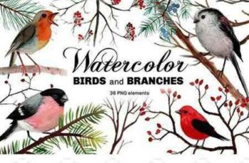 1801038 Watercolor birds and branches 2111080 5