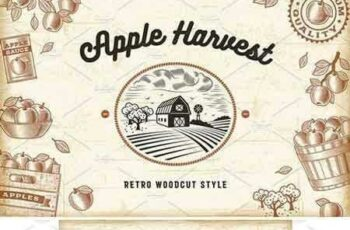 1801052 Vintage Apple Harvest Set 2103322 4