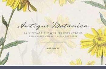 1801053 Vintage Flowers Vol.04 - Extra Large 2095737 7