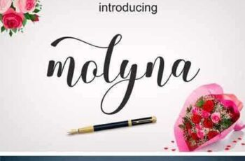 1801242 Molyna Font 4