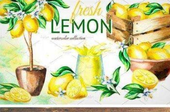 1801280 Fresh Lemon Watercolor Collection 2182396
