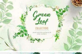 1802106 Watercolor Green Leaf Clip Art 2193456 7