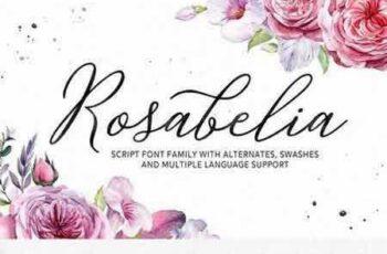 1802118 Rosabelia - Script & Sans Serif 2154469 7