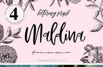 1802124 Maldina Feminime (4 Fonts) 2171714 2