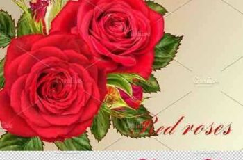 1802134 Collection of red roses 2246244 6