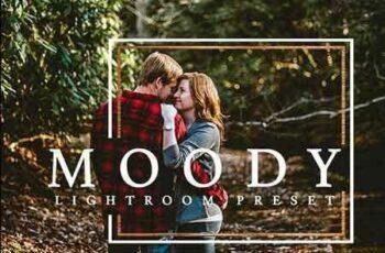 1803013 Moody Warm Lightroom Preset 2100930 7