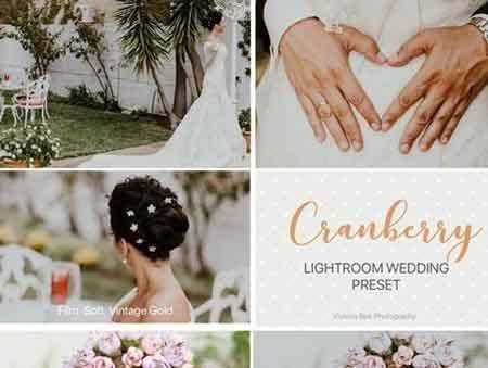1803291 CRANBERRY Wedding Lightroom Preset 2323542 - FreePSDvn