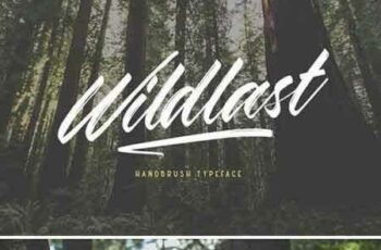 1804002 Wildlast Handbrush Typeface 2232902 6