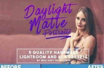 1804022 Daylight Matte Preset (LR & ACR) 698091 5