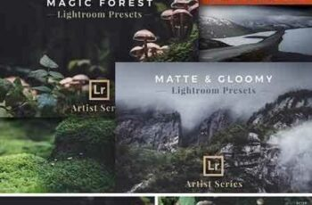 1804263 Artist Series – Lightroom Bundle 03 1928924 7