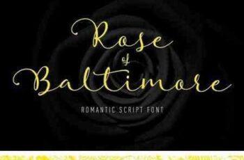 1804283 Rose of Baltimore 1510936 5