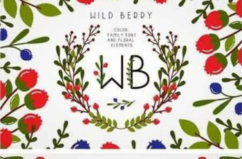 1804288 Wild Berry - Color Family Font 2272444 5