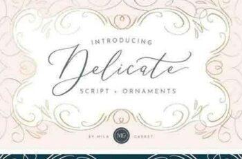 1805002 Delicate Elegant Script & Ornaments 2269416 15