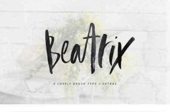 1805123 Beatrix Brush Font + Extras 2225984 9