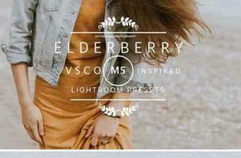 1805140 ELDERBERRY VSCO Cam M5 LR preset 2377890