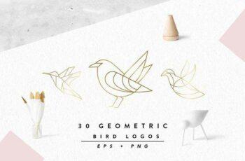 1805184 Geometric Bird Logos EPS & PNG 2227528 7