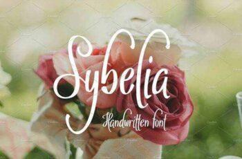 1805197 Sybelia 2229643 4