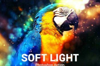 1805260 Soft Light Photoshop Action - Advanced 21731408