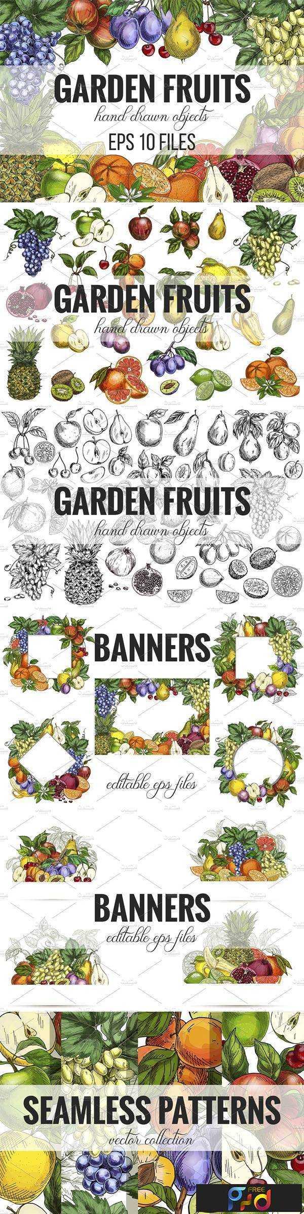 1805279 Garden Fruits, vector collection 2404657 1