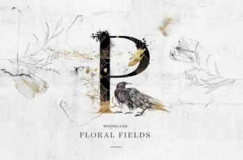 1806148 Floral Fields Alphabet & Graphics 2303534 3