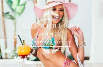 1806159 Sugarberry Summer Lightroom Presets 2456454 4