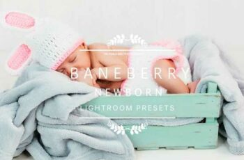 1806266 BANEBERRY Newborn Lightroom Presets 2536317 6
