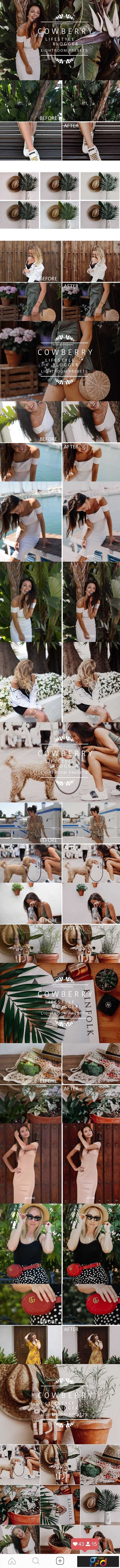 1806280 COWBERRY Lifestyle Blogger Presets 2583027 1