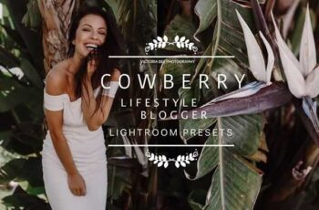 1806280 COWBERRY Lifestyle Blogger Presets 2583027 3