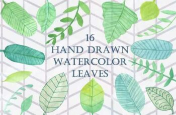 1806283 16 Handpainted Watercolor Leaves 2534036 4