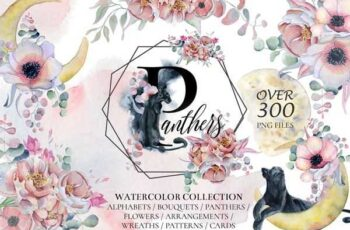 1807012 Panthers & Floral Watercolor Set 2509961 4