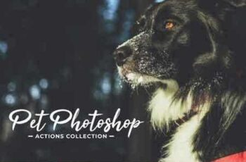 1808266 Pet Photoshop Actions Collection 3470628 6