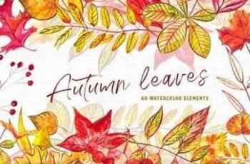 1809034 Autumn leaves 3471675 6
