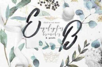 1809040 Eucalyptus branches& petals 3471479 4