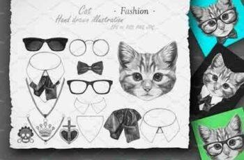 1809070 Cat Fashion 2544478 5