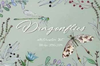 1809076 Watercolor Dragonflies Set 34837 4