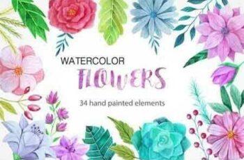1809078 Watercolor Flower Pack 13963 8