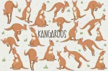 1809115 Kangaroos 45999 5